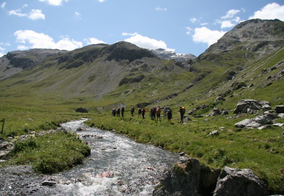 Alpenkräutter und Bergblumen auf dem E5 bestaunen.
