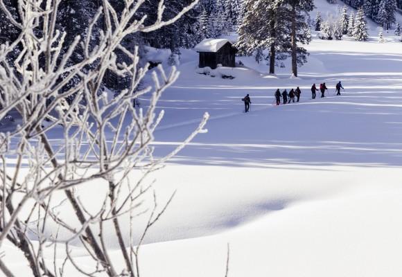 Schneeschuhwanderer bei der Tour zur Schwarzwasserhütte.