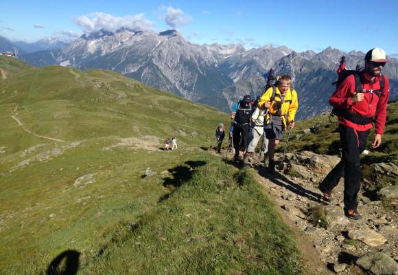 Tiere an Wasserstelle in den Alpen