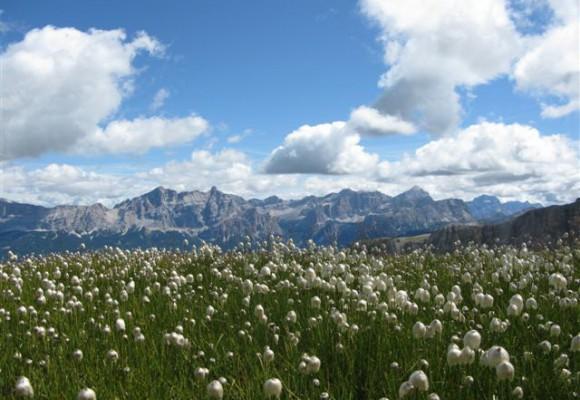 Ein Traumziel in den Dolomiten mit idyllischem Ausblick.