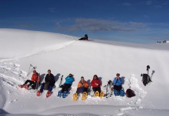 Schneeschuhwanderer auf dem Weg nach oben hindurch zwischen verschneiten Tannen.