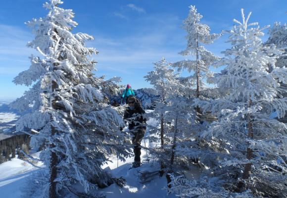 Schneeschuhwandern im Kleinwalsertal.