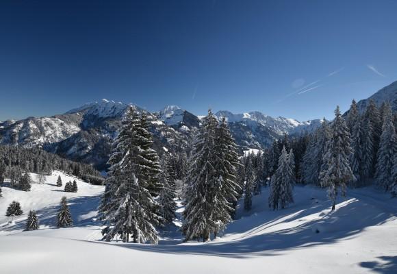 Schneeschuhwandern im Bergdorf Hinterstein