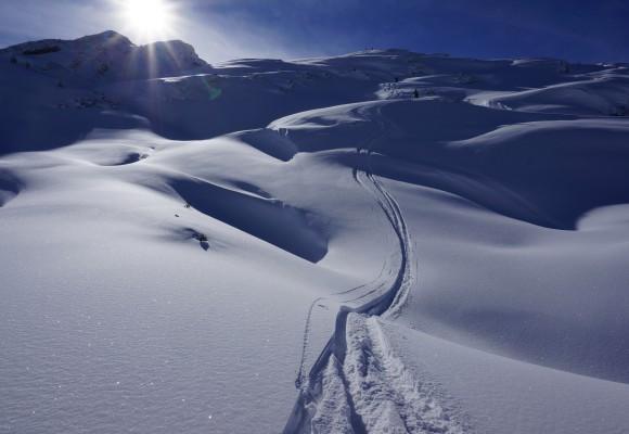 Zwei Skifahrerspuren im Tiefschnee bei einem Skitourenkurs im Kleinwalsertal.
