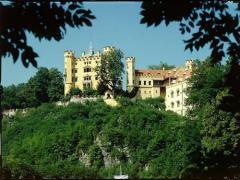 Webcam Schloss Hohenschwangau im Allgäu