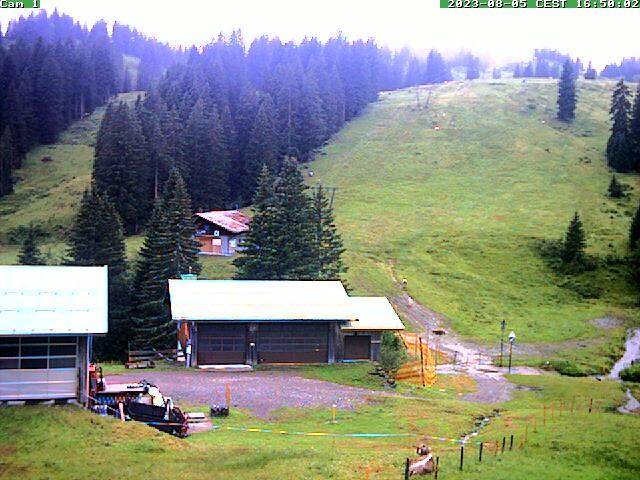 Webcam Grasgehren im Allgäu